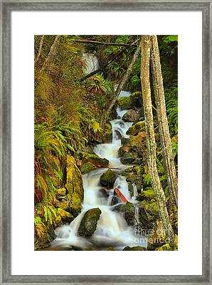 Falling Through Fens And Moss Framed Print by Adam Jewell
