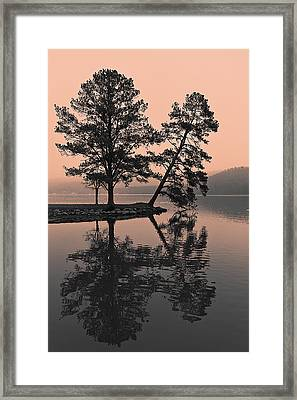 Framed Print featuring the photograph Falling Tree Reflections by Ron Dubin