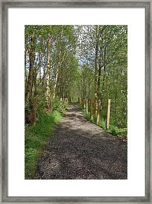 Falloch Path Framed Print