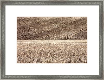 Fallow Field Framed Print by Todd Klassy
