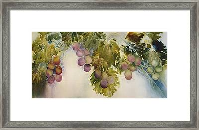 Fall's Bounty Framed Print