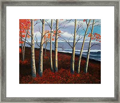 Fall's Charm Framed Print