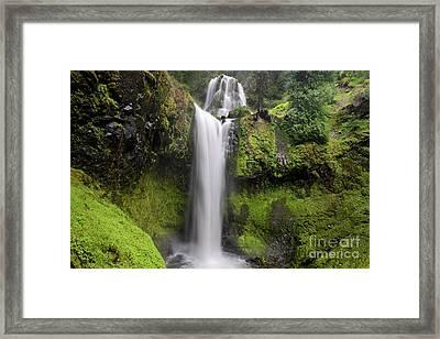 Falls Creek Falls In Washington  Framed Print