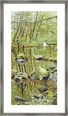 Falls Creek Pool Framed Print
