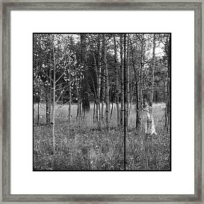 Falls Hidden Beauty Framed Print