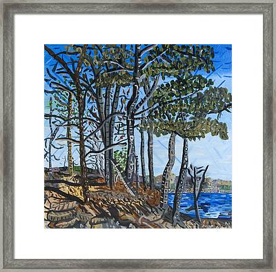 Falls Lake At Blue Jay Point Framed Print by Micah Mullen