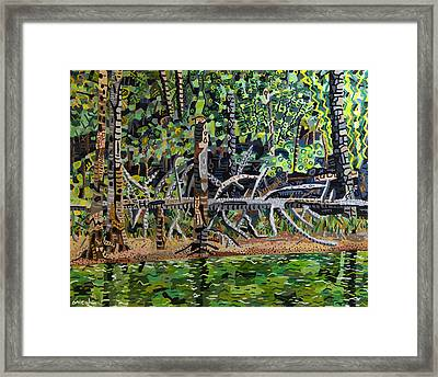 Falls Lake In July Framed Print by Micah Mullen