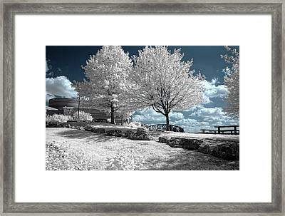 Falls Of The Ohio State Park Framed Print