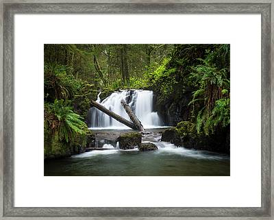 Falls On Canyon Creek Framed Print