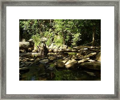 Falls Park Framed Print by Flavia Westerwelle