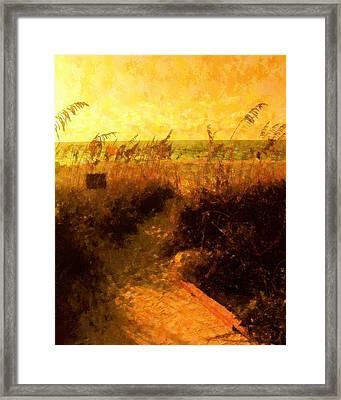 Falls Path Framed Print