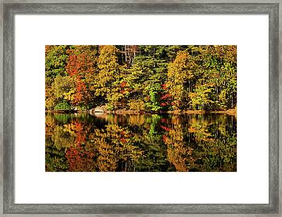 Falls Quiet Framed Print by Karol Livote