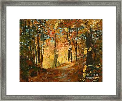 Fall's Radiance In Quebec Framed Print by Claire Gagnon