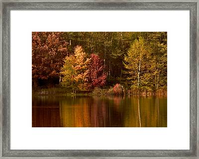 Fall's Reflection On Swan Lake Framed Print by Bedford Shore Photography