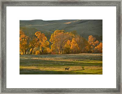 Framed Print featuring the photograph Falls Reward.. by Al Swasey