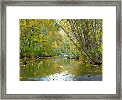 Falls Road Bridge Over The Gunpowder Falls Framed Print by Donald C Morgan