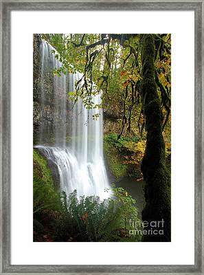 Falls Though The Trees Framed Print