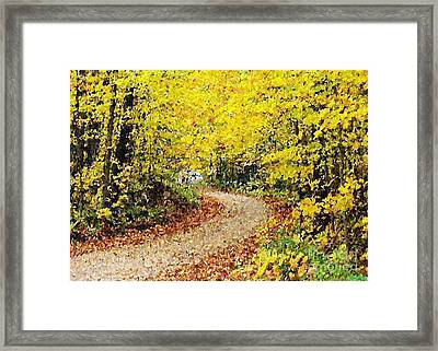 Fallscape Framed Print by Don Phillips