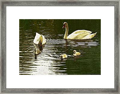 Framed Print featuring the photograph Family Day Out  by Fine Art By Andrew David