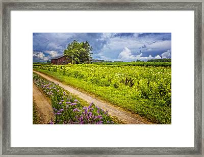 Family Farm Framed Print by Debra and Dave Vanderlaan