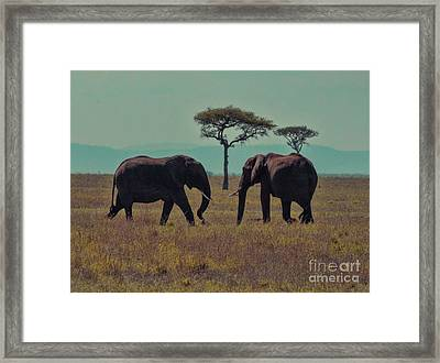 Framed Print featuring the photograph Family by Karen Lewis
