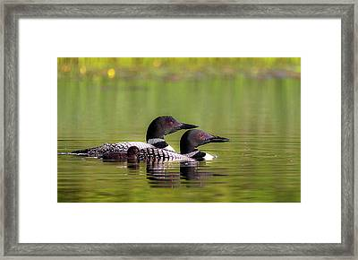 Family Framed Print by Kelly Marquardt