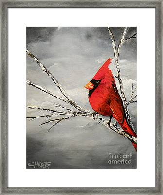 Family Man Framed Print by Chad Berglund