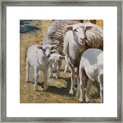 Framed Print featuring the painting Family Of Sheep by John Reynolds
