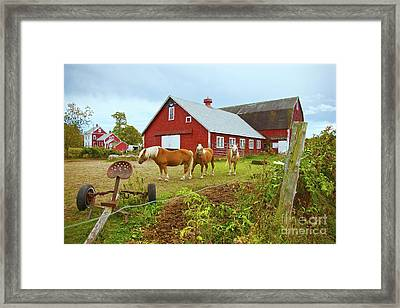 Family On The Farm Framed Print by Amazing Jules