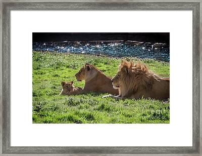 Family Pride Framed Print