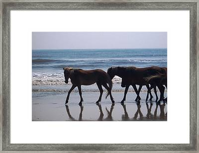 Family Stroll Framed Print by James and Vickie Rankin