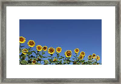 Family Time Framed Print by Amanda Barcon