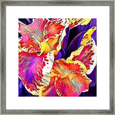 Framed Print featuring the photograph Fanciful Canna  by Heidi Smith
