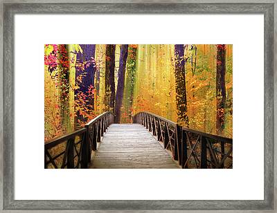 Framed Print featuring the photograph Fanciful Footbridge by Jessica Jenney