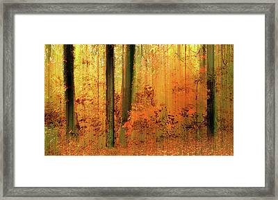 Framed Print featuring the photograph Fanciful Forest by Jessica Jenney