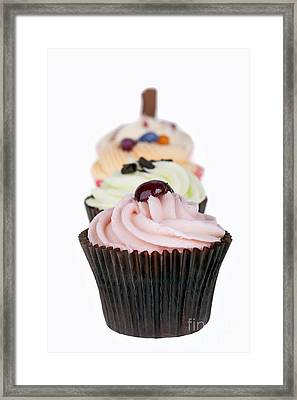 Fancy Cupcakes Framed Print by Jane Rix
