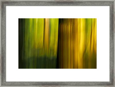Fancy Forest Framed Print by Mah FineArt