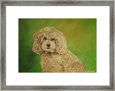 Fancy Girl Framed Print by James Higgins