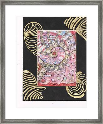 Fancy Shell With Golden Rings Framed Print by Anne-Elizabeth Whiteway