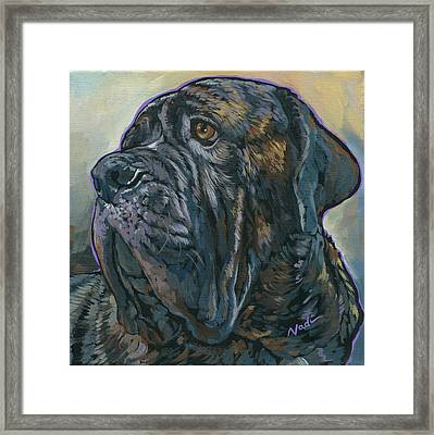 Fang Framed Print by Nadi Spencer