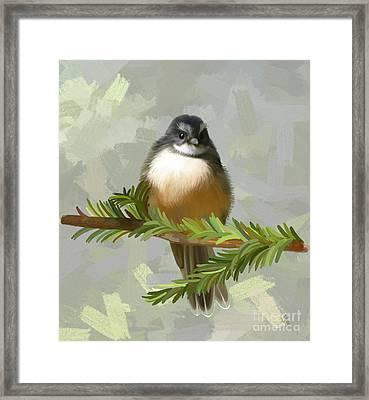 Framed Print featuring the painting Fantail  by Ivana Westin