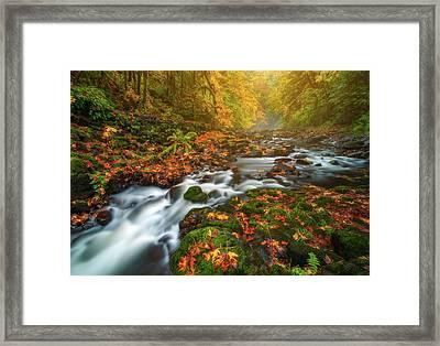 Fantasies Of Fall Framed Print