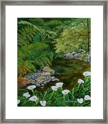 Fantastic Canna Lillies Framed Print