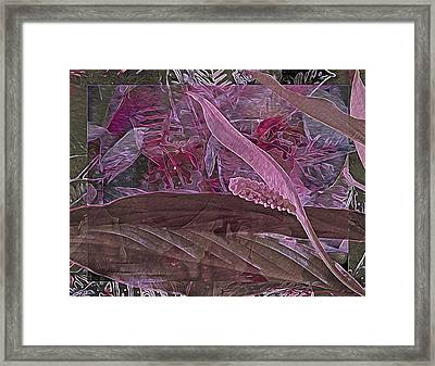 Fantasy African Violets And Peace Lily Pink, Red And Pink Framed Print by Lynda Lehmann