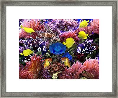 Fantasy Aquarium Framed Print