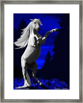 Fantasy By Moonlight Framed Print by Diane C Nicholson