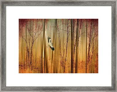 Fantasy Flight Framed Print