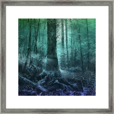 Fantasy Forest 3 Framed Print