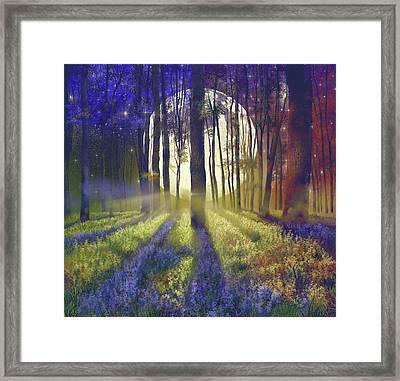 Fantasy Forest 4 Framed Print