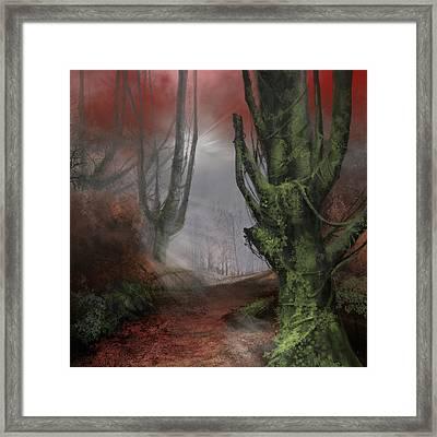 Fantasy Forest Framed Print